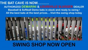 Swing Shop Web Banner copy