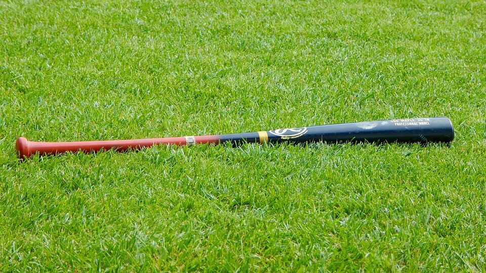 Baseball Bat in the grass